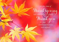 Vivid Colors Thanksgiving Card