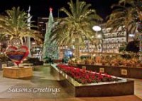 San Francisco's Union Square during the holidays