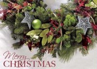 Merry Greenery Christmas Holiday Card