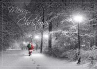 Special Delivery Christmas Greeting Card