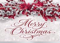 Christmas Tidings Holiday Greeting Card