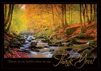 Radiant Thanks - Thanksgiving  Holiday Cards for your business