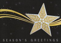Stardust Holiday Card