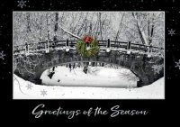 Forest Park Holiday Card