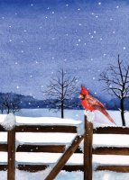 Feathered Friends Charity Holiday Card