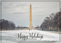 Snow On The Washington Mall Business Holiday Cards