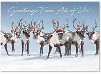 Antler Chandelier Holiday Greeting Card