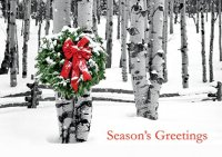 Birch Grove Holiday Cards
