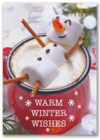 Warm Winter Wishes Humorous Holiday Cards