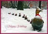 Boston Ducklings Christmas Card
