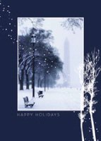 Snowfall on the Mall Holiday Card