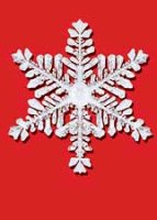 Icy Snowflakes (BCF0604) Charity Holiday Cards